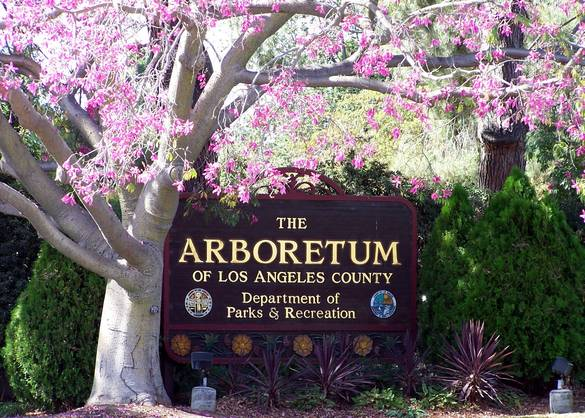 The Arboretum of Los Angeles county board