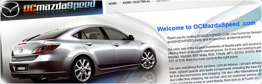 Web Site Design Example with Flash